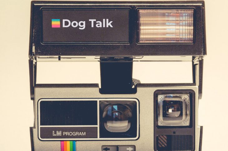 Dog Talk Slippery Slope Cover Art - Instant Camera